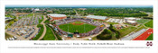 Mississippi State Bulldogs Baseball at Dement Stadium Panorama
