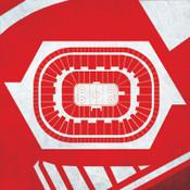 Detroit Red Wings - Joe Louis Arena City Print