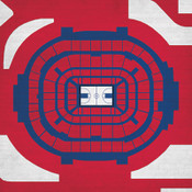 Arizona Wildcats - McKale Center City Print