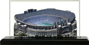 Bank of America Stadium Carolina Panthers 3D Stadium Replica