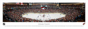 Phoenix Coyotes at Gila River Arena Panoramic Poster