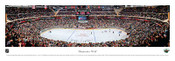 Minnesota Wild at Xcel Energy Center Panoramic Poster