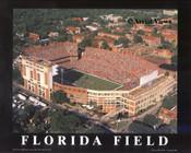 Ben Hill Griffin Stadium Aerial Poster