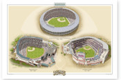 Atlanta Braves Ballparks Print