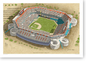 Pro Player Stadium - Florida Marlins  Print