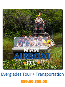 miami-double-decker-everglades-sightseeing-tour.png