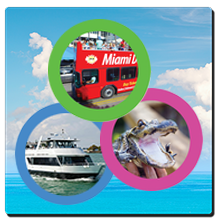 3 Tours in 1 Day. Miami Double Decker Bus Tour + Miami Boat Tour + Everglades Airboat Tour