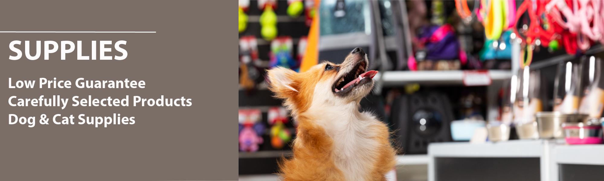 K9 Loft Pet Supplies