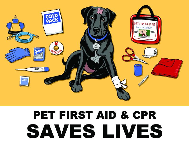 K9 Loft CPR Course