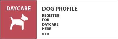 K9 Loft Dog Profile