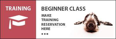 Beginner Training Class