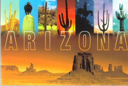 Arizona Glow Postcard - Pack of 100