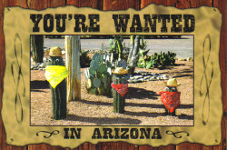 AZ Wanted Postcard - Pack of 100