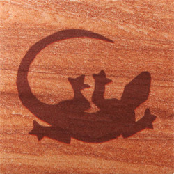 Gecko Coasters - Set of 4