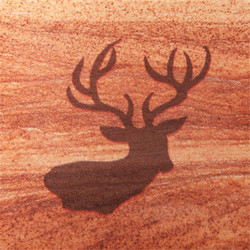 Buck Head Coasters - Set of 4
