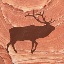 Elk Scene