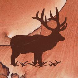 Elk w/ Grass