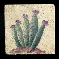 """Rustic Cactus #6 4""""x4"""" Deco Tile"""