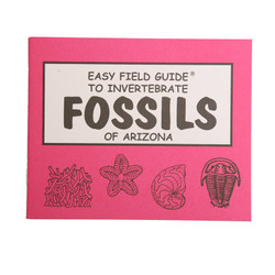 Easy Field Guide - Fossils