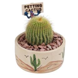 Gold Petting Cactus