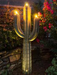 Saguaro Cactus with 3 Torches