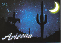 Arizona Nightrider Cutout Postcard - Pack of 100