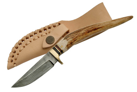 """8"""" DAMASCUS STAG SPIKE KNIVE"""