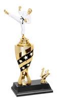 Black & Gold Martial Arts Trophy
