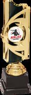 Martial Arts Custom Graphic Triumph Award