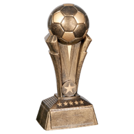 Large Soccer Champion Award