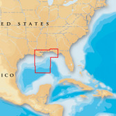 Navionics Platinum+ - Gulf of Mexico Central - microSD/SD