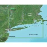 Garmin BlueChart g2 Vision - VUS004R - New York - microSD/SD