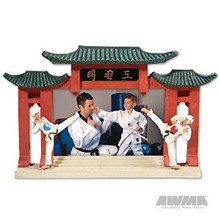 AWMA® TKD Resin Picture Frame