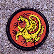 AWMA® Mini Gold Dragon Patch