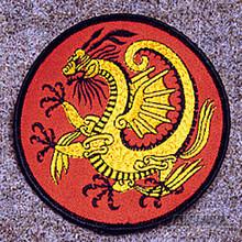 AWMA® Gold Dragon Patch