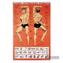 AWMA® Striking Points Poster