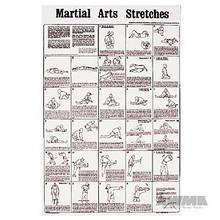 AWMA® Martial Arts Stretches Poster