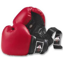 Century® Boxing and Training Gloves