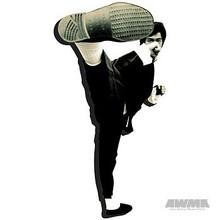 "AWMA® Bruce Lee ""Kick"" Magnet"