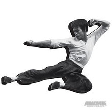 """AWMA® Bruce Lee """"Fly"""" Magnet"""