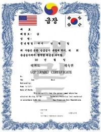 KWON® TKD Gup Certificate