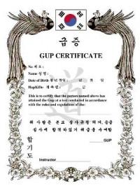 KWON® Hapkido Gup Certificate