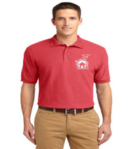 Dillard Street Men's Basic Cotton Polo w/ embroidery