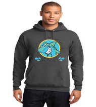 Fla Virtual High School Hooded Sweatshirt