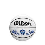 Villanova Wildcats NCAA National Championship Mini White Panel Basketball