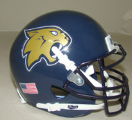 Thiel College Tomcats Schutt Mini Authentic Football Helmet