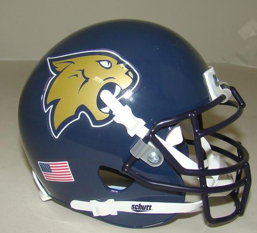 Thiel College Tomcats Schutt Mini Authentic Football Helmet