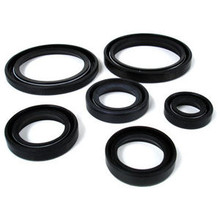 Oil Seal Kit, 99-9958B