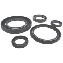 Oil Seal Kit, 99-9958