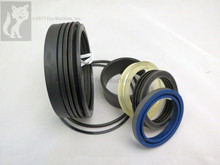 Hydraulic Seal Kit for Ford 555 Stabilizer '78-83 2Pc